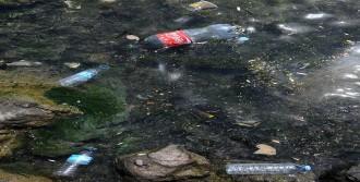'Karadeniz'e Teknolojik Arıtma Tesisleri Kurulmalı'