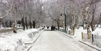 Doğu'yu Soğuklardan Kar Yağış Kurtaracak