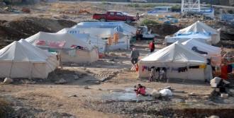 DUHOK'taki Ezidi Kampında Kış Hazırlığı