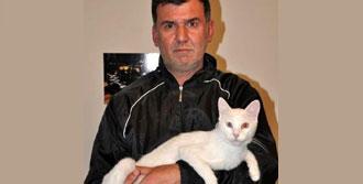 Lojmanda Kedi Besleyen İşçiye Sürgün