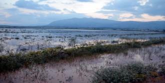 Elmalı'da Yağmur Sele Neden Oldu