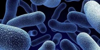 Enfeksiyondan Korunmanın Yolu