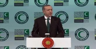'PKK Terör Örgütü Değil Mi?'