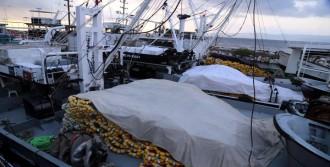 Ereğlili Balıkçılar Sezonu Açtı