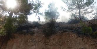 Erken İhbar, Silifke'de Büyük Bir Orman Yangını Önledi