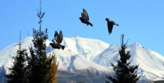 Erzurum'da Hava Sıcaklığı -5'e Düştü