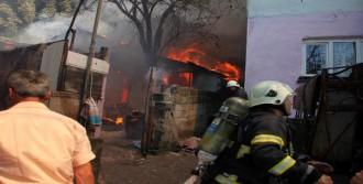 Evde Çıkan Yangın, Ormana Sıçradı