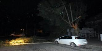 Fırtına ve Yağmur Marmaris'te Hayatı Olumsuz Etkiledi
