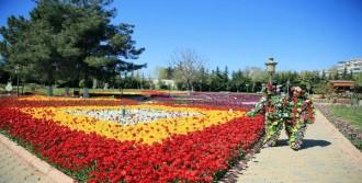 3.5 Milyon Çiçek Dikildi!