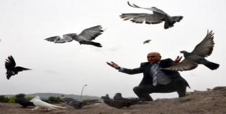 Gazze'de Barış İçin Güvercin Uçurdu
