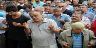 Giresun'da İki Kardeş Toprağa Verildi