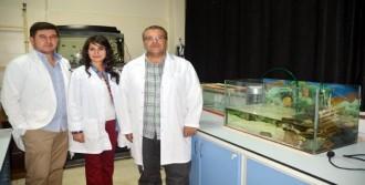 Balık Ölümlerinde Virüs Şüphesi
