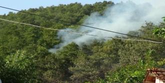 Gölcük'teki Orman Yangını Söndürüldü