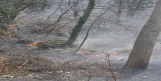 İnegöl'de 10 Dönüm Orman Yandı