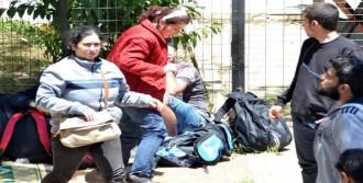 İstanköy Adası'na Geçemeden Yakalandılar