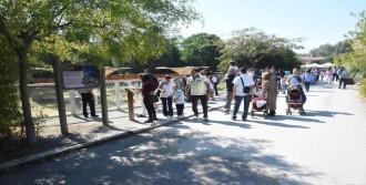 İzmirliler Doğal Yaşam Parkı'nı Çok Sevdi