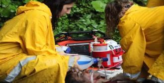 Kamyonet Uçuruma Yuvarlandı: 3 Ölü 3 Yaralı