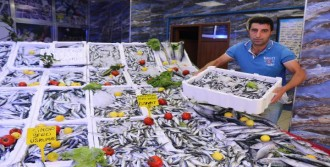Karadeniz'de Sıcaklık, Balıkçıları Vurdu