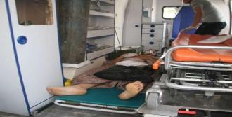 25 Suriyeliden 5'i Hayatını Kaybetti