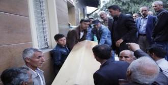 3 Ypg'li Şanlıurfa'da Öldü
