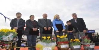 Kocaeli Lale Festivali Büyük İlgi Gördü