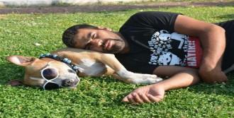 Köpeğiyle Türkiye Turuna Çıktı