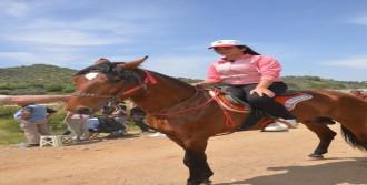 Köşk'te 'Rahvan Atlar' 3'üncü Kez Koştu