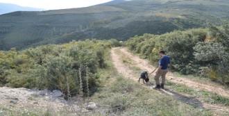 Ankara'dan Getirilen Köpeklerle Arandı