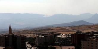 Küpeli Dağı'nda Yangın Çıktı