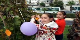 Lösemi Hastası Çocuklar Dileklerini Ağaca Astı