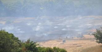 Malkara'da 2 Bin Saman Balyası Kül Oldu