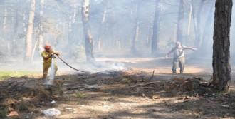 20 Dönümlük Ormanlık Arazi Yandı