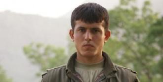 Mesken Dağın'da Yaralanan PKK'lı Öldü