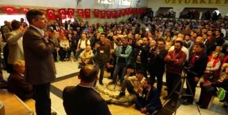Metin Feyzioğlu: Vatan, Millet Ve Memleket Meselesi