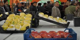 Meyve Üretimi Arttı, Fidancılık Gelişiyor