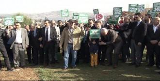 MHP'lilerden 'Fidan Dikme' Eylemi