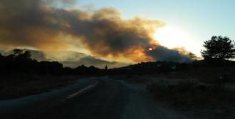 Milas'ta Çöplük Alanda Yangın Çıktı