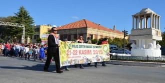 Milas'ta  Zeytin Hasadı Şenliği Yürüyüşle Başladı