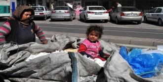 Çöpler Arasında Mücadele Veriyor
