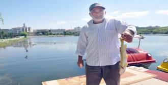 Mogan Gölü'nde Balık Ölümleri