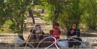 Müdahale Korkusuyla Türkiye'ye Sığınıyorlar