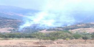 Ödemiş'te Makilik Alanda Yangın