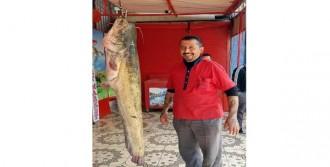 Oltasına 45 kiloluk yayın balığı takıldı
