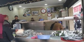 Ordu'da Balıklara El Konuldu