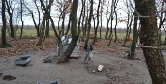 6 Aylık Cenini Bekçi Köpeği Buldu