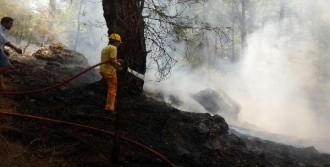 Ortaca'da Orman Yangını Çabuk Söndürüldü