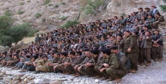 PKK'da Çözülmeler Devam Ediyor