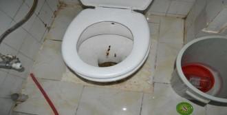 Uyuşturucuyu Tuvalete Döktü