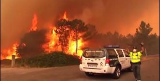 Portekiz'de Yangın Dehşeti