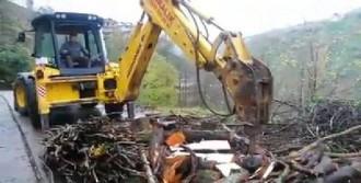 Rize İşi Odun Yarma